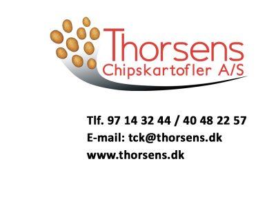 Thorsen_Chips1